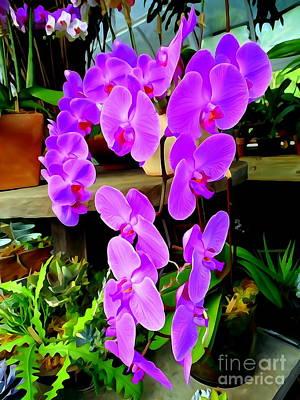 Digital Art - Purple Orchids #2 by Ed Weidman