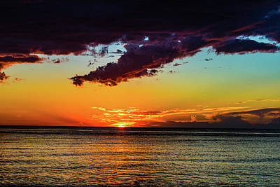 Photograph - Purple Paints The Orange by JimO Ogilvie