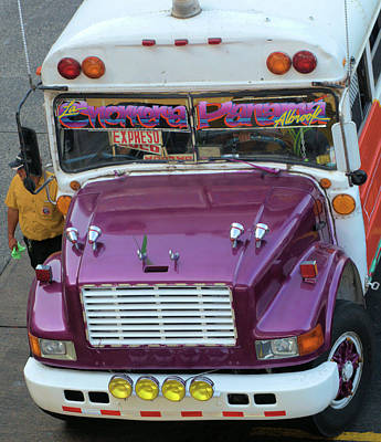 Photograph - Purple Panama Bus by Douglas Pike