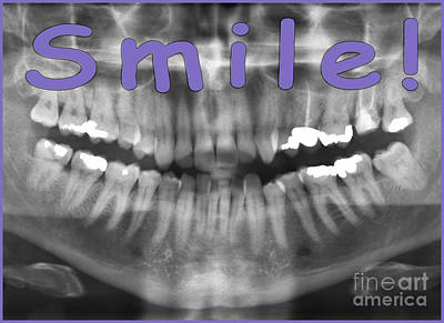 Pet Care Photograph - Purple Panoramic Dental X-ray With A Smile  by Ilan Rosen