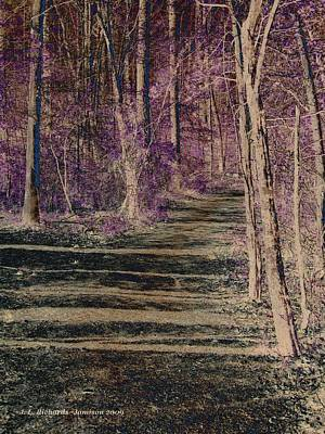 Photograph - Purple Path by Jennie  Richards