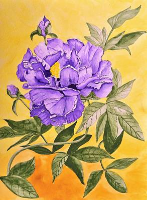 Painting Rights Managed Images - Purple Peony Royalty-Free Image by Linda Brody