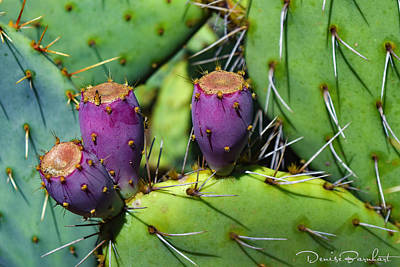 Photograph - It Was A Purple People Eater by Denise Barnhart