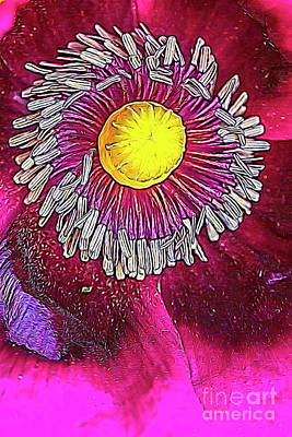 Abstract Flowers Mixed Media - Purple poppy by Veikko Suikkanen