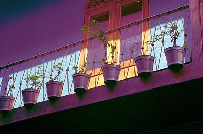 Photograph - Purple Pots by Douglas Pike