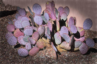 Purple Prickly Pear Cactus Print by Donna Kennedy
