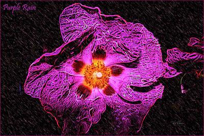 Photograph - Purple Rain by Bill Posner