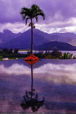 Photograph - Purple Reflections In Princeville by Lynn Bauer