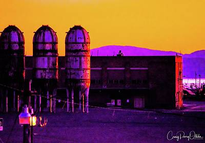 Photograph - Purple Rockets by Craig Perry-Ollila