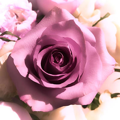 Photograph - Purple Rose by Nathan Little