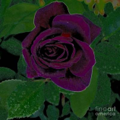 Photograph - Purple Rose Tapestry by Diane montana Jansson