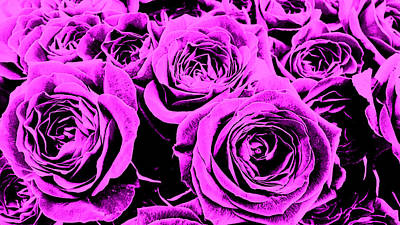 Digital Art - Purple Roses by Nathan Little