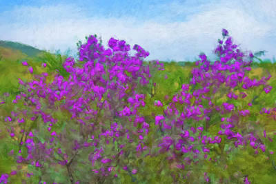 Painting - Purple Sage Big Bend by Gary Grayson