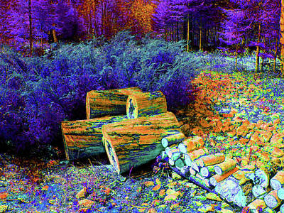 Photograph - Purple Scenic Woodpile by Shirley Moravec