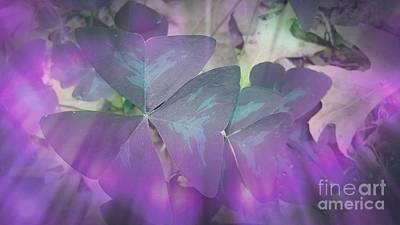 Digital Art - Purple Shamrock by Rachel Hannah