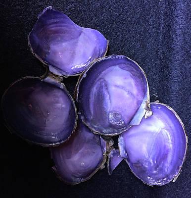 Photograph - Purple Shells by Loretta Golby