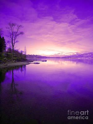Okanagan Lake Photograph - Purple Skies by Tara Turner
