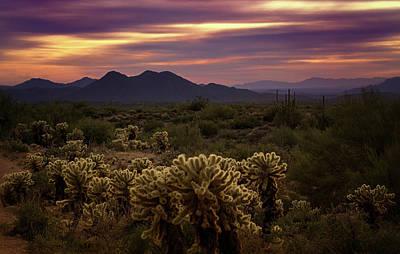 Photograph - Purple Sonoran Skies At Sunset  by Saija Lehtonen