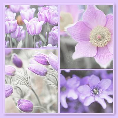 Purple Spring Bloom Collage. Shabby Chic Collection Art Print by Jenny Rainbow