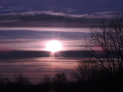 Photograph - Purple Sunrise by Teresa Schomig
