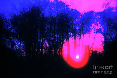 Photograph - Purple Sunset by Craig J Satterlee