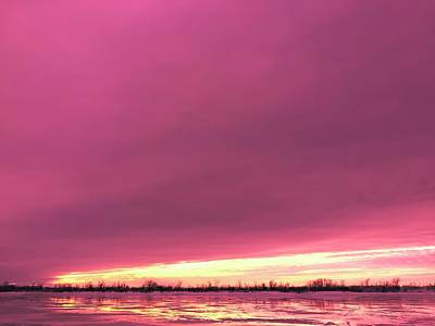 Photograph - Purple Sunset In Winter by Cristina Stefan