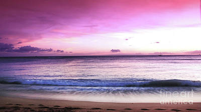 Photograph - Purple Sunset by Kristine Merc