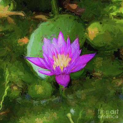 Photograph - Purple Sunshine - Sq by Scott Pellegrin