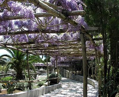 Purple Tunnel Original