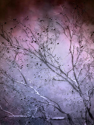 Photograph - Purple Twilight   by Ann Powell