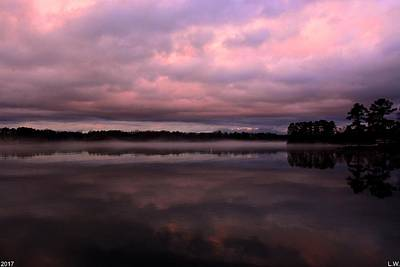 Photograph - Purple Twilight by Lisa Wooten