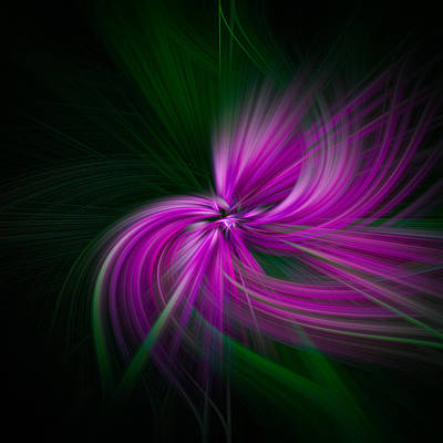 Walden Pond Photograph - Purple Twirls by Noah Katz