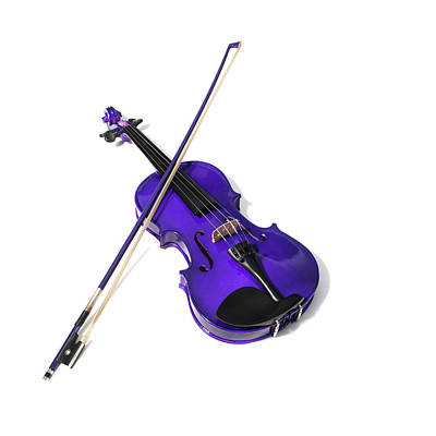 Photograph - Purple Violin II by Helen Northcott