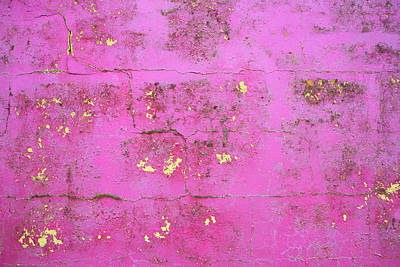 Photograph - Purple Wall by David Hare