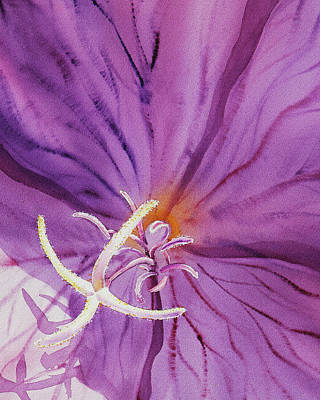 Royalty-Free and Rights-Managed Images - Purple Watercolor Flower Close Up by Irina Sztukowski