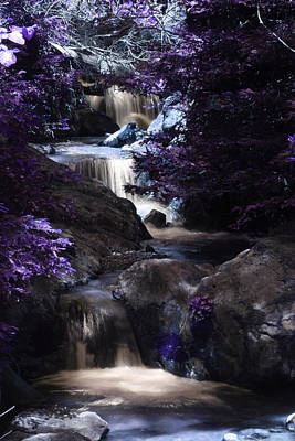 Photograph - Purple Waterfall by Jeffrey Ringer