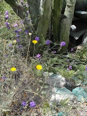 Photograph - Purple Yellow Flowers Green Cactus by Mozelle Beigel Martin