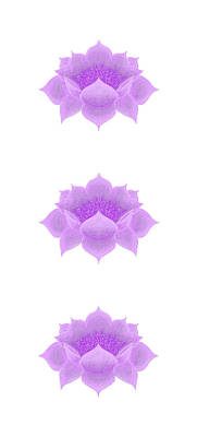 Digital Art - Purple Lotus Pattern by Elizabeth Lock