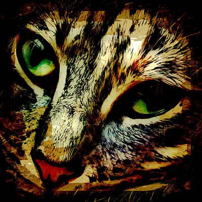 Kitty Digital Art - Purr-fect Love by David G Paul