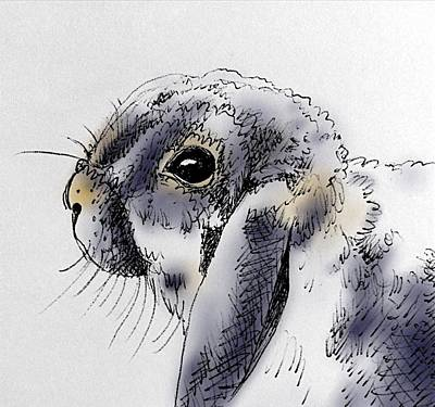 Animals Drawings - Purrfect Bunny by Pookie Pet Portraits