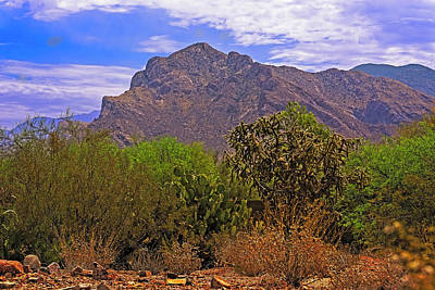 Photograph - Pusch Ridge Morning H10 by Mark Myhaver