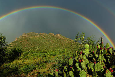 Mark Myhaver Rights Managed Images - Pusch Ridge Rainbow h38 Royalty-Free Image by Mark Myhaver