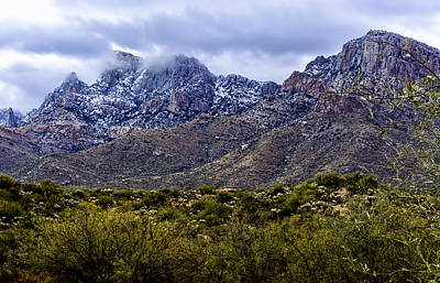 Photograph - Pusch Ridge Snow No8 by Mark Myhaver