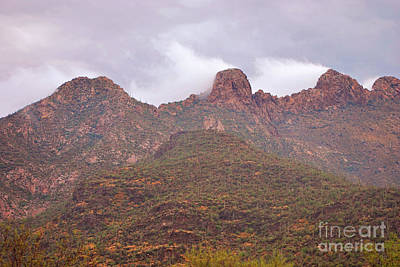 Pusch Ridge Tucson Arizona Art Print by Donna Greene