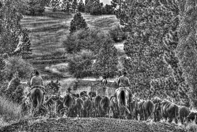 Cattle Drive Photograph - Pushing 'em Along by Lori Kimbel