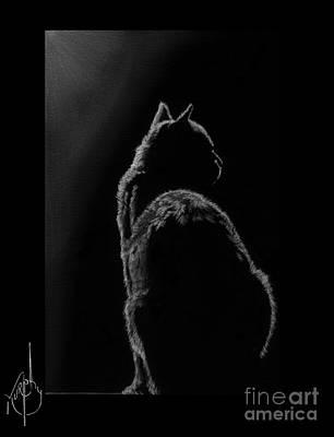 Pencil Drawing Drawing - Pussy Cat by Murphy Elliott