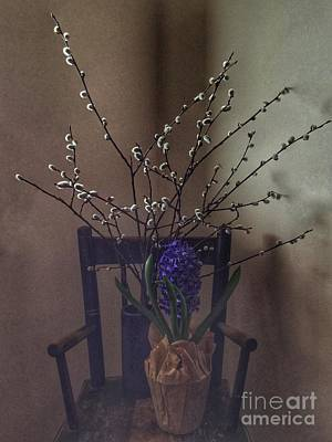 Photograph - Pussy Willow And Hyacinth Still Life by Patricia E Sundik