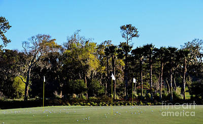 Photograph - Putting Green At Tpc Sawgrass by Randy J Heath
