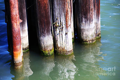 Photograph - Pylons Poles Water by David Frederick