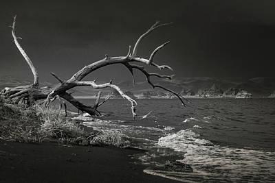 Photograph - Pyramid Lake Bw 1366 by Janis Knight
